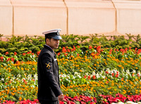 New Delhi - guarding the garden